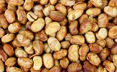 Close View Roasted Soy Nuts