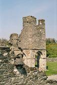 Ireland - Mellifont Abbey
