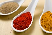 Various Spicy Powder poster