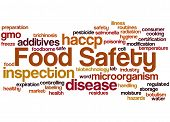 Food Safety, Word Cloud Concept 6 poster