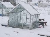 Snow Greenhouse