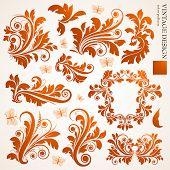Set of floral ornaments for design