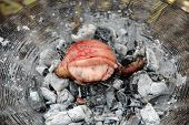 Goat Testicle Cooking On A Fire