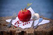 Red Apple Dinner