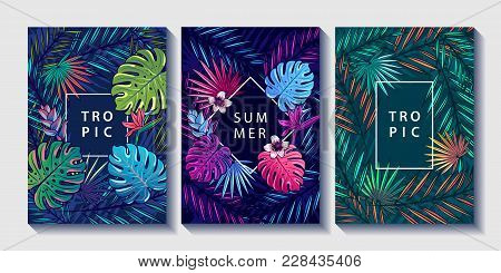 poster of Tropical Leaves And Flowers Design Posters Set. Palm, Monstera Leaves, Strelitzia And Hibiskus Flowe