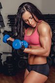 Athletic Fitness Woman Doing Biceps Exercise With Pair Of Dumbells. poster
