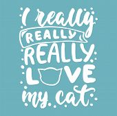 I Really Love My Cat - Hand Drawn Lettering Phrase For Animal Lovers On The Blue Background. Fun Bru poster