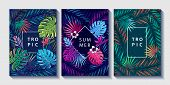 Tropical Leaves And Flowers Design Posters Set. Palm, Monstera Leaves, Strelitzia And Hibiskus Flowe poster