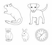 Puppy, Rodent, Rabbit And Other Animal Species.animals Set Collection Icons In Outline Style Vector  poster