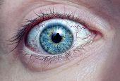 ojo hombres con macro vasos rojos de la sangre