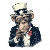 Monkey Uncle Sam With Pointing Finger At Viewer, From Front. I Want You. Vintage Color Engraving Ill poster