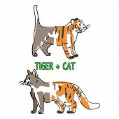 Childish Tiger And Pet Cat Animal Splice Vector Illustration. Hand Drawn Doodle Inked Wildlife Anima poster