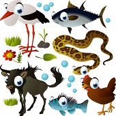 vector animal set: stork, fish, chicken, anaconda, wildebeest