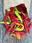 Photo On Theme Long Red Hot Chili Pepper, Acute Vegetable. Photography Consists Of Curved Red Hot Ch poster