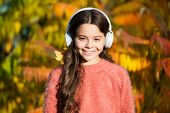 Enjoy Music Fall Day. Autumn Walks With Nice Songs. Educational And Downloadable Audio Books For Chi poster