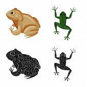 Vector Illustration Of Wildlife And Bog Logo. Set Of Wildlife And Reptile Stock Vector Illustration. poster