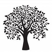 stock photo of ethereal  - black tree silhouette isolated on white background - JPG