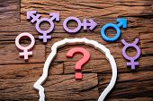 Question Mark Inside Persons Head Outline And Multiple Gender Signs Around poster