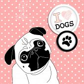 picture of dog birthday  - I love Pugs - JPG