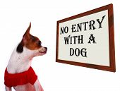 No Entry With A Dog Sign Showing Dogs Unauthorized