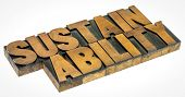 sustainability - isolated word in letterpress wood type, capacity for the biosphere and human civili poster