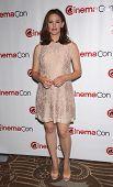 LAS VEGAS - APR 25:  JENNIFER GARNER arrives for the Cinema Con 2012-Disney Luncheon  on April 25, 2