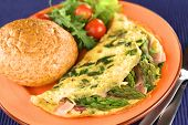 Green Asparagus and Ham Omelet