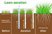 Lawn Aeration For Active Plant Growth. Free Access Of Water And Air To Soil. Process Steps Before An poster