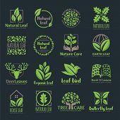 Set Of Natural Leaf, Leaf Logo Template In Vector Format, Pack Of Vector Leaf Logo poster