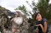 Girl With Juvenile Red-footed Booby on Christmas Island