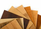 stock photo of walnut-tree  - Wood sample swatches fan on white background - JPG