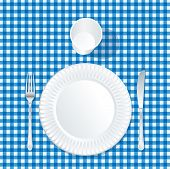 vector paper plate with plastic glass on blue tablecloth