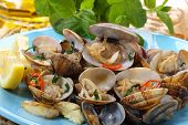 dish of portuguese clams-traditional recipe