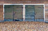 Garage Doors  In Autumn