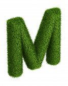 Natural grass letter M