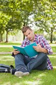 Handsome focused student sitting on grass studying on campus at college