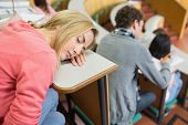 Female sleeping with students sitting in the college lecture hall