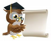 stock photo of convocation  - Illustration of a cute owl character in professor - JPG
