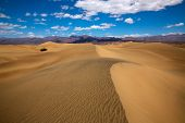 picture of mesquite  - Mesquite Dunes desert in Death Valley National Park California - JPG