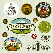 organic & farm-vector labels and elements