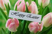 Happy Easter card with pink tulips