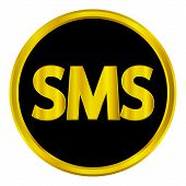 Sms Gold Web Icon