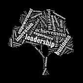 Leadership word cloud conceptual image
