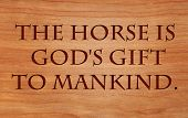 The horse is God's gift to mankind - Arabian Proverb on wooden red oak background