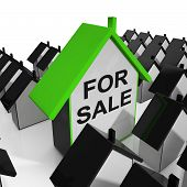 For Sale House Means Real Estate On Market