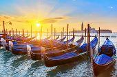 Venetian gondolas at sunrise, Venice, Italy