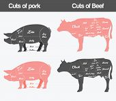 picture of roasted pork  - vector illustration - JPG