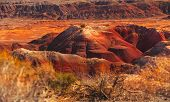 Beautiful Image of the painted desert, Arizona. foreground Blurred.
