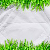 Crumpled Paper On  Green Grass  And Copyspace For Text