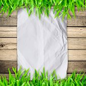 Crumpled Paper On  Green Grass With Wooden Board And Copyspace For Text